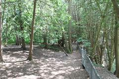 Elora Gorge - Trail