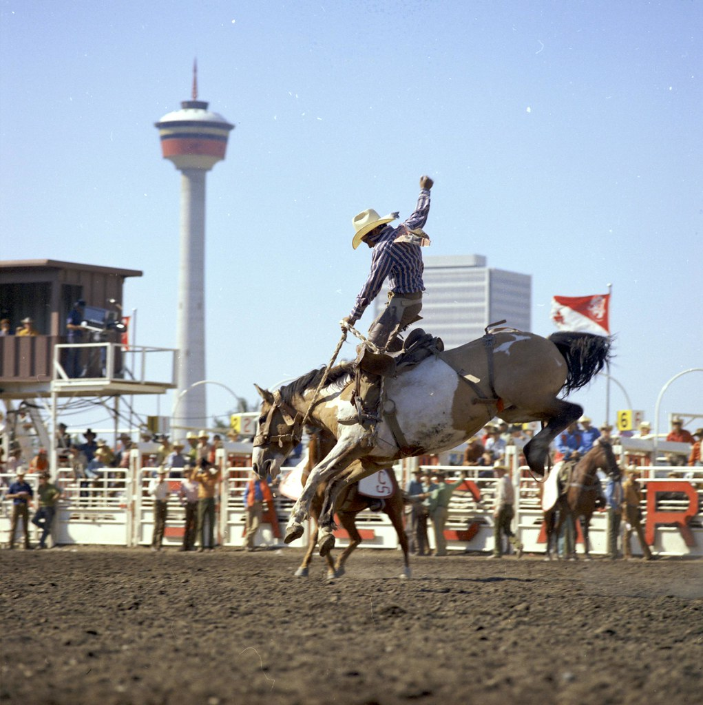 Bronc riding at the Calgary Stampede | Calgary, Alberta  Pub… | Flickr
