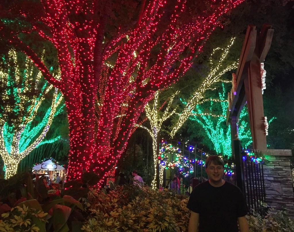 Busch Gardens Christmas Town Tampa.Tampa Busch Gardens Christmas Town Tree Lights Me