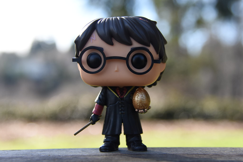 Our Triwizard Champion, Harry Potter