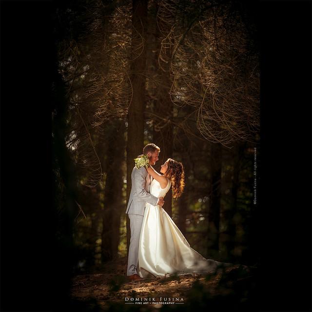 Loïc & Anaïs | Wood Love
