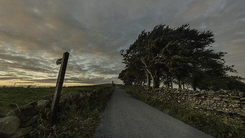 pendle pendlehill blacko trees sunset clouds road weather signpost lancashire barley country lane strang top black moss barrowford