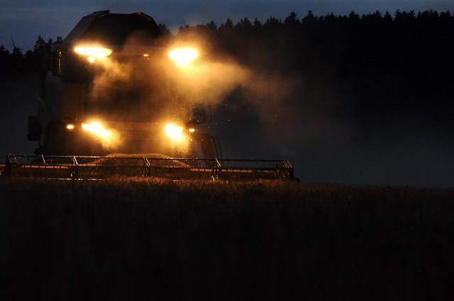 Harvesting at night - detail