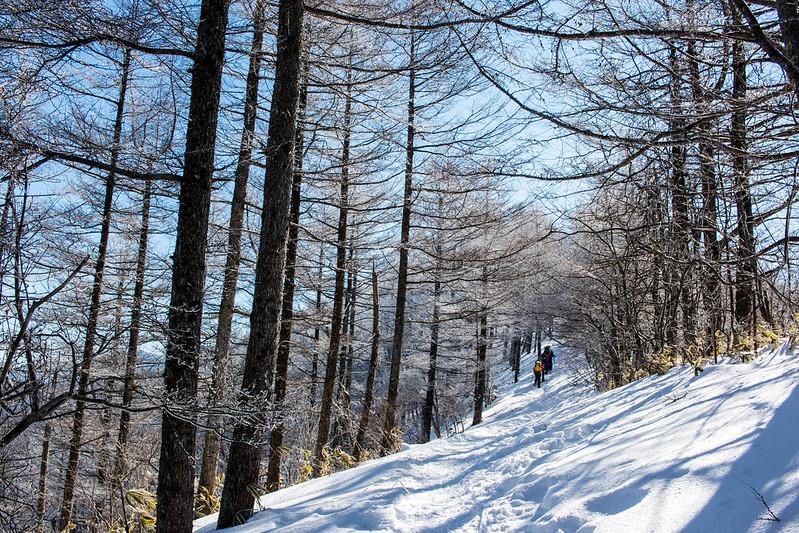 冬の飯盛山をチェーンスパイクで歩く