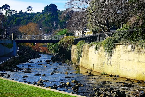University of Otago Water of Leith