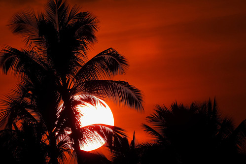 bigisland hawaii usa outdoor coast seaside kailuakona travel waterfront vulcanicisland tropical tropicalisland sunset nightshot eveninglight sky nightsky clouds black red palmtrees palmtreesilhouettes wiflevel01 wiflevel02 dnysmphotography dnysmsmugmugcom