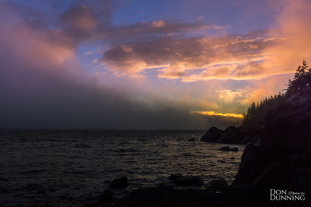 Fog Rolling Into the Sunset