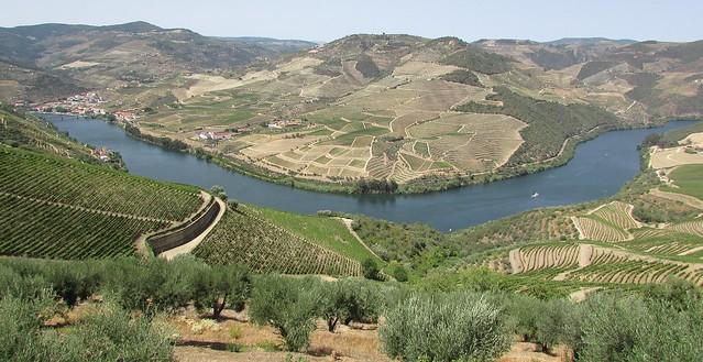 Rio Douro - Vinhas - Por Ervedosa avistando o Pinhão