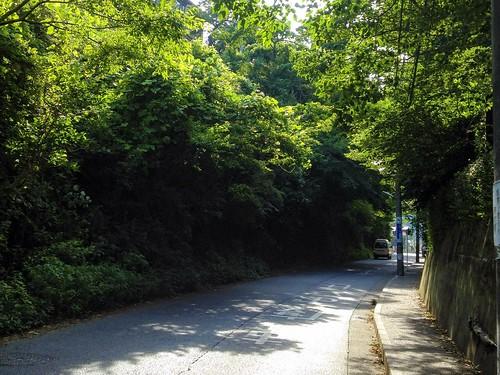 Road   by Shinji Abe