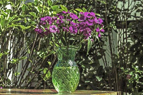 Il vaso | by Wal Wsg