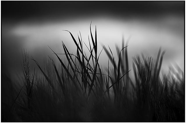 Dark_Matter_096