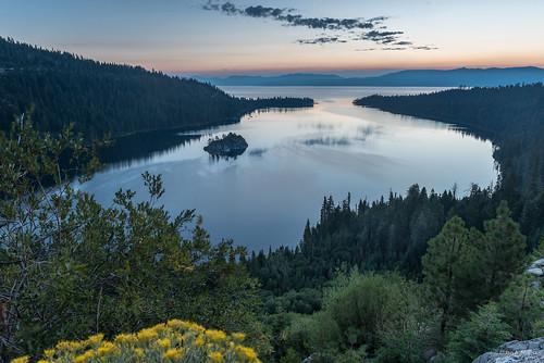 ca california dawn emeraldbay flower island lake laketahoe northamerica northerncalifornia pink reflection southlaketahoe sunrise usa unitedstatesofamerica wildflowers us