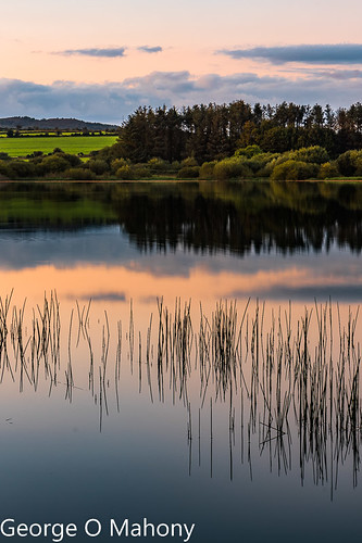 lake water sunset sky landscape ireland waterford cowaterford reeds