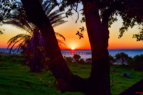 sunrise seabrook texas galveston bay