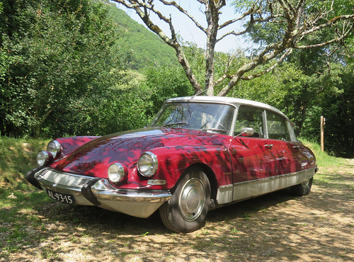 Citroen DS 21 Pallas | by Spottedlaurel