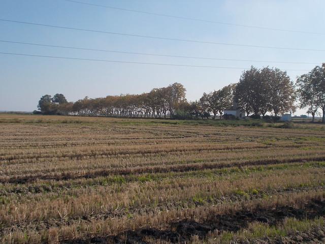 DSCN4659