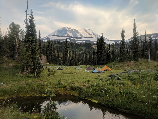 Mt. Adams from Killen creek
