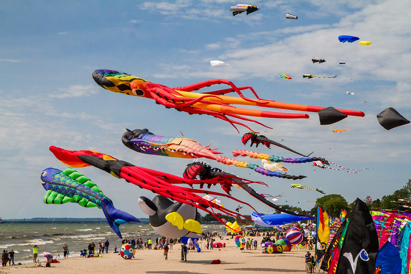 The Giant Kite Field