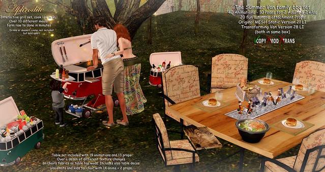 Aphrodite-Family-Van-BBQ