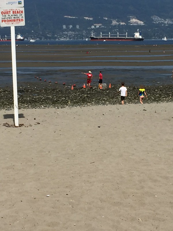Marine Mammal Rescue at Spanish Banks