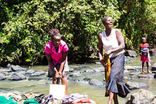 waterresources women humanbeings aquaticenvironment humans livelihoods person watershedmanagement watermanagement mau rainforests feminine female trees forestedwatersheds kenya humanbeing forests tropicalforests ecosystemservices watershedprotection communityforestry water human people washing bomet ke gender
