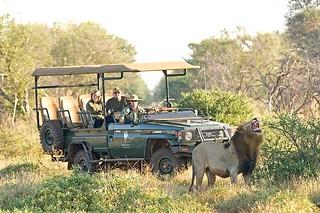 Green car Afrika | by lajwania