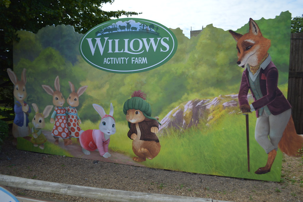 Image result for willows activity farm