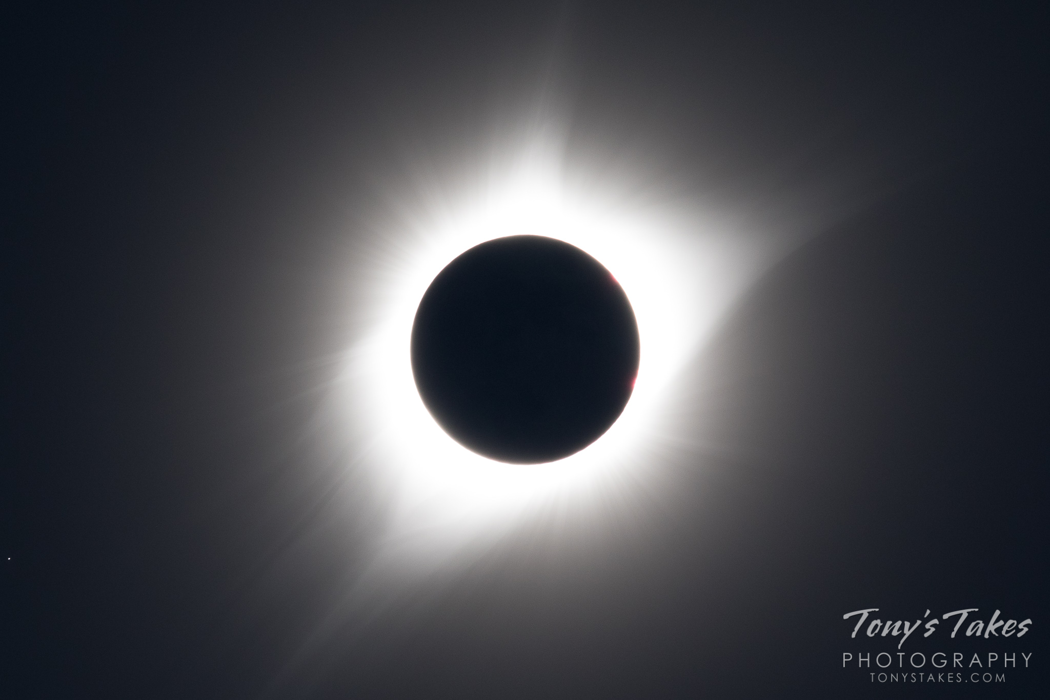 The Great American Eclipse showing the sun's corona. (© Tony's Takes)