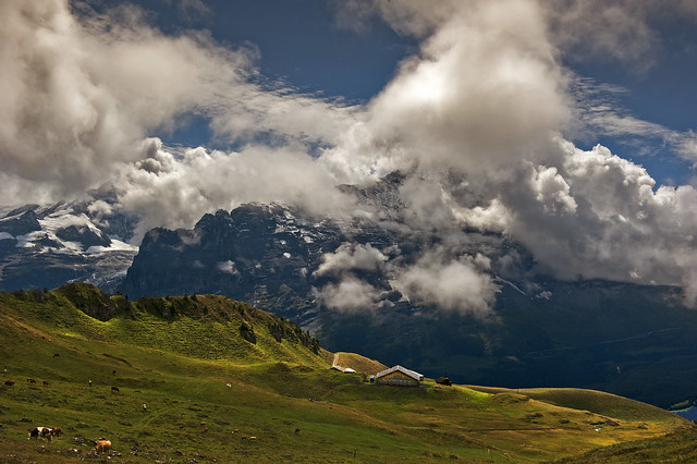 A Farm in front of the mighty Eiger.With admiration to   Ueli Steck (4 October 1976 – 30 April 2017 )No, 8542.