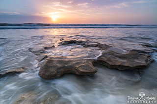 Daybreak at Marineland, Florida