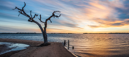 wa pelicanpoint bunbury sunset lonetree flickrunitedaward australia