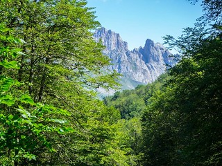 Nature. #picosdeeuropa #valdeón #mountains #travelphoto #photography #olympusomd | by treboada