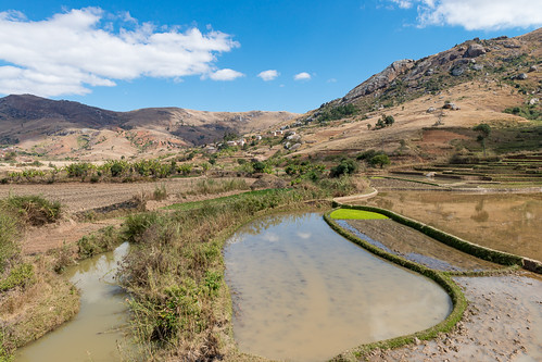 agriculture fields terracedfields landscapes madagascar travel farmland fianarantsoaprovince mg