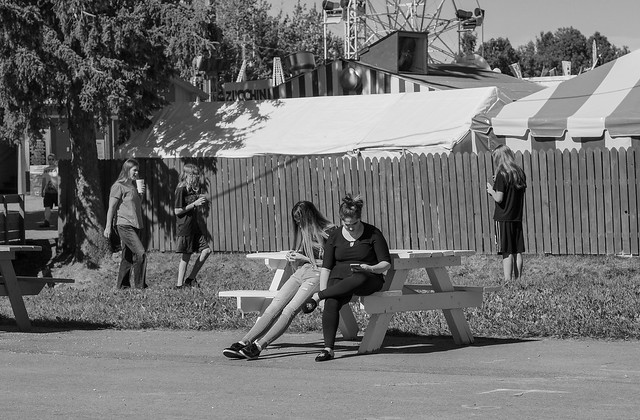 Tanana Valley Fair 2017 Shared-59