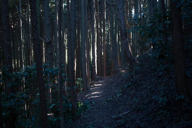 20161210-浜石岳-0386.jpg