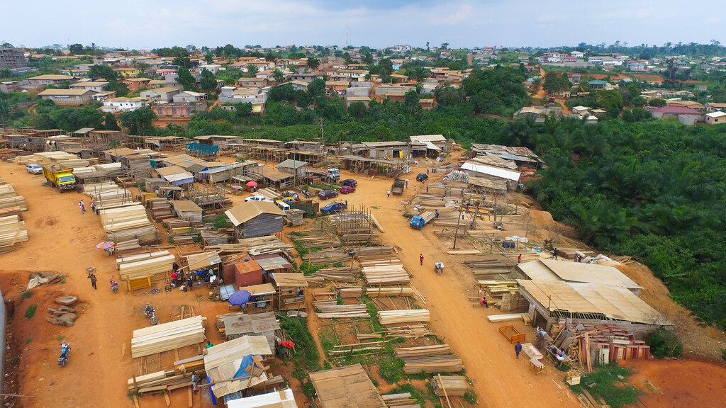 Timber industry in Cameroon