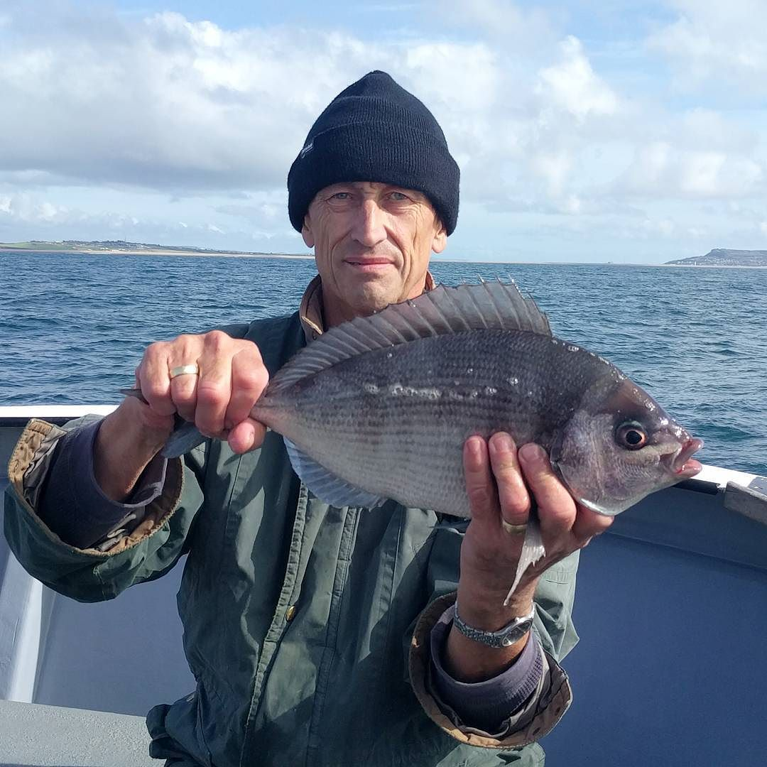 Some great bream fishing today, plenty over 3lb and a couple pushing 4lb. #amarisaweymouth #blackbream #ukfishing #fishingtrip