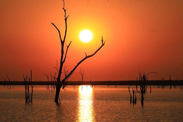 Puesta de sol africana. Lago Kariba