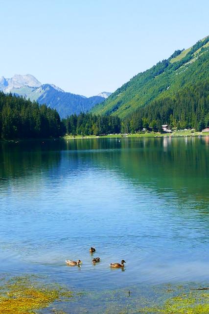 08.25.17.Lac de Montriond