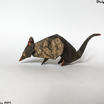Origami Rat - Barth Dunkan.