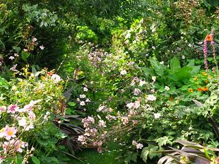 Capel Manor Gardens | by Laura Nolte