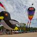 Penguin Kite