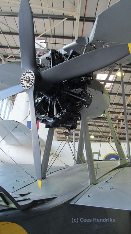 Supermarine Seagull V 3