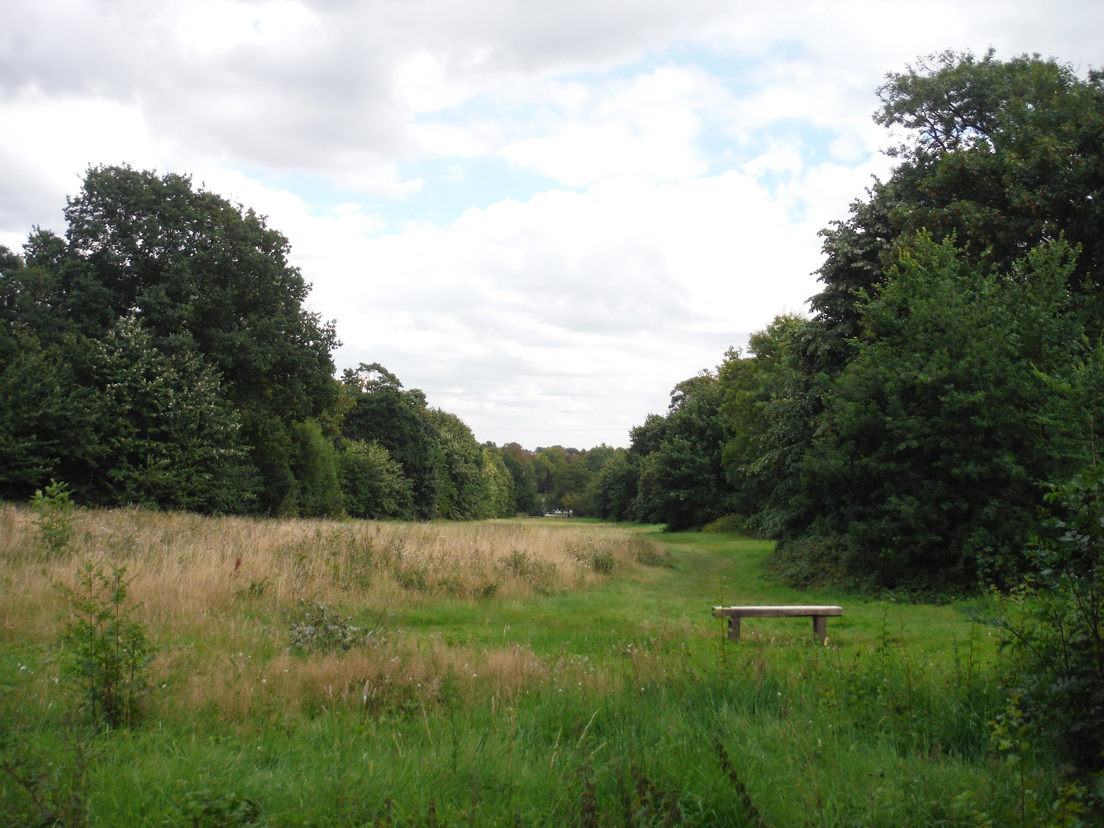 Bench with Long Vista towards Ornamental Pond SWC Walk Short 11 - Wanstead Park