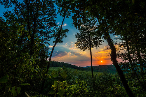 sony alpha a58 sigma 1020mm f35 wideangle nature sunrise wild forest plants beautiful sky clouds tripod still