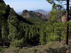 Gran Canaria_161