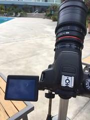 camera setup for eclipse | by danielafort