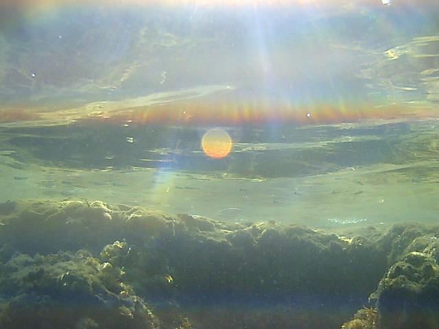 Fish n Sun