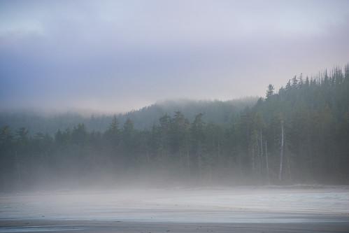 Misty Evening | by Bryn Tassell