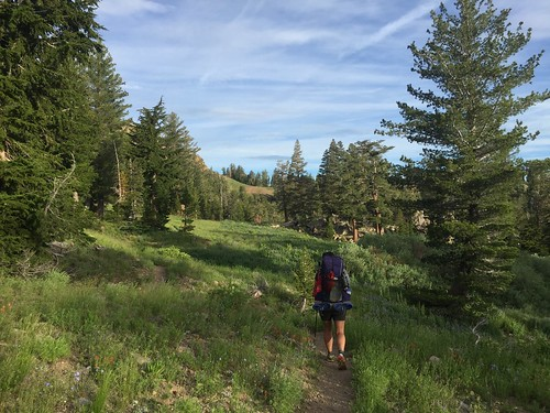 PCT: Day 83